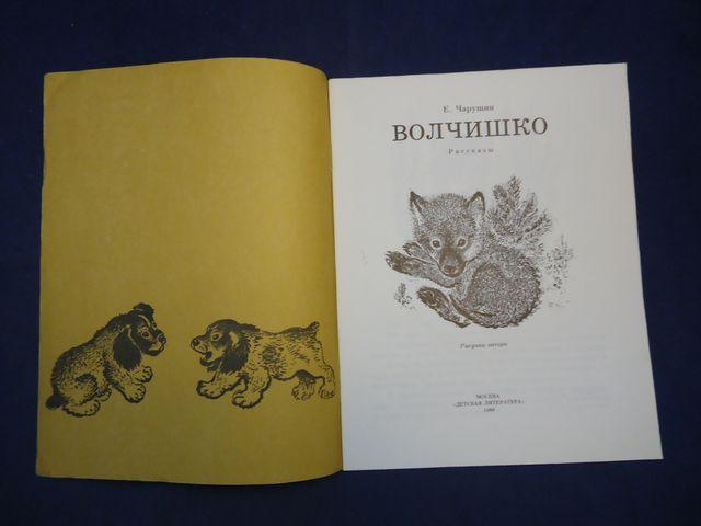 Рисунки из рассказа волчишко чарушина 147