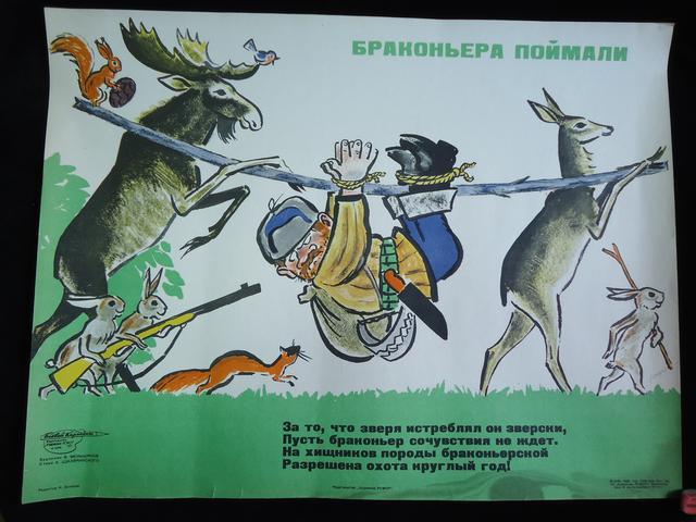 рисунок о браконьерах