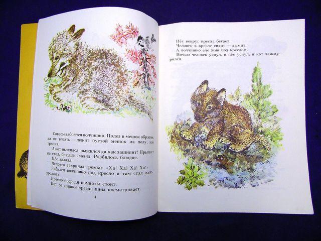 Рисунки из рассказа волчишко чарушина 102